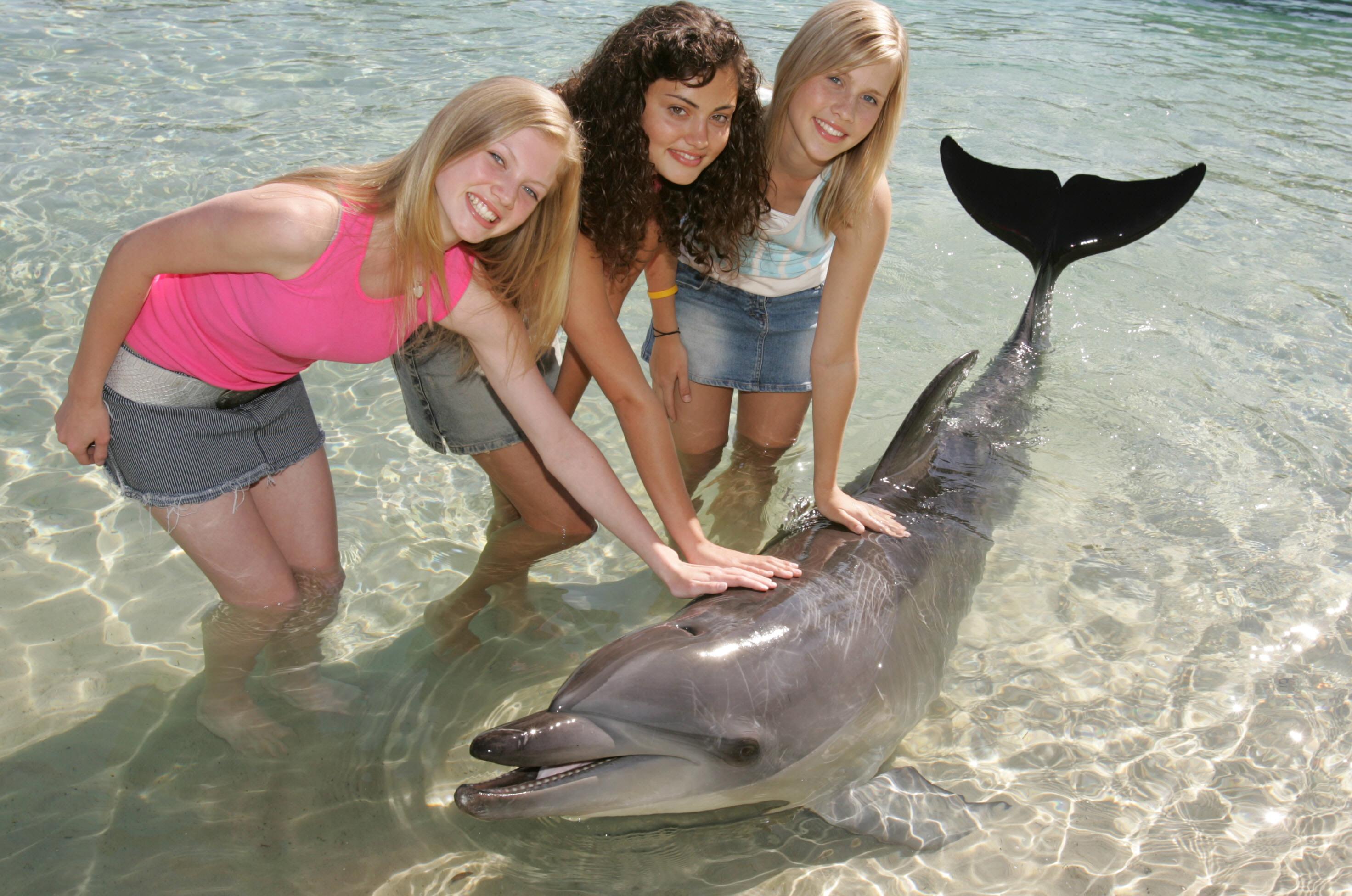 H2O Просто добавь воды актрисы сериала и дельфин - Фото H2O Просто ...
