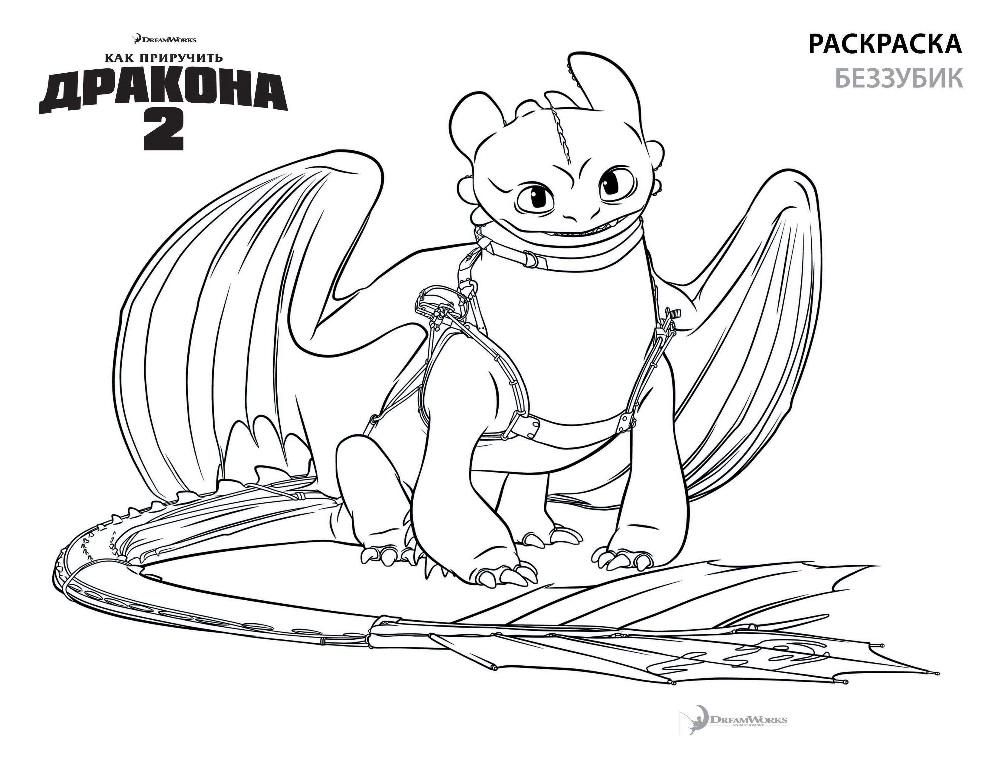 раскраска беззубика раскраски как приручить дракона 2