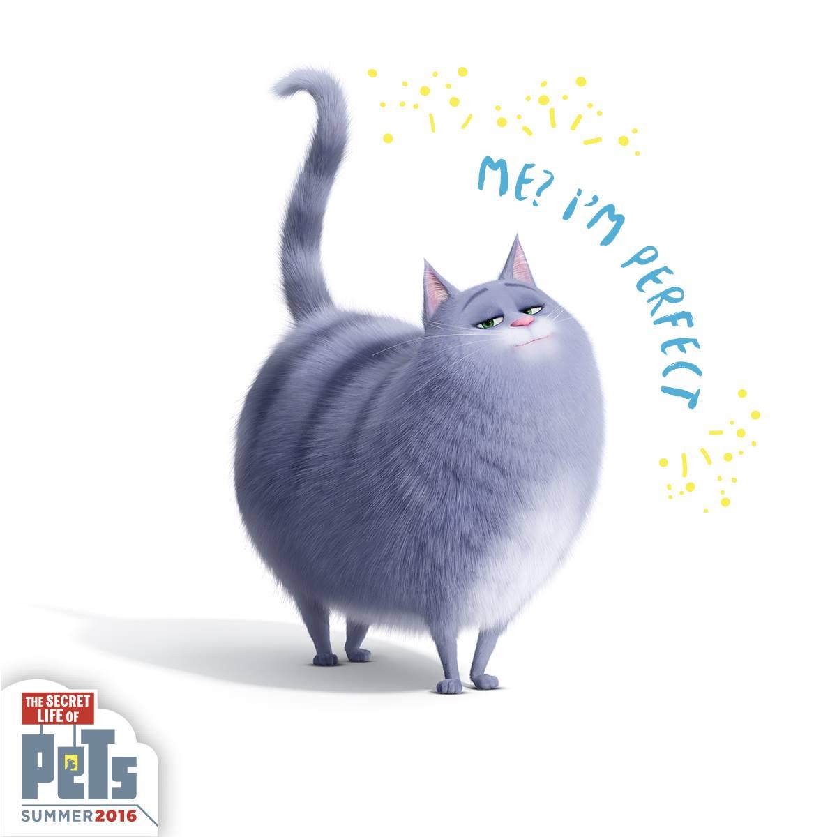 Кошка Хлоя - персонаж мультфильма «Тайная жизнь домашних ...
