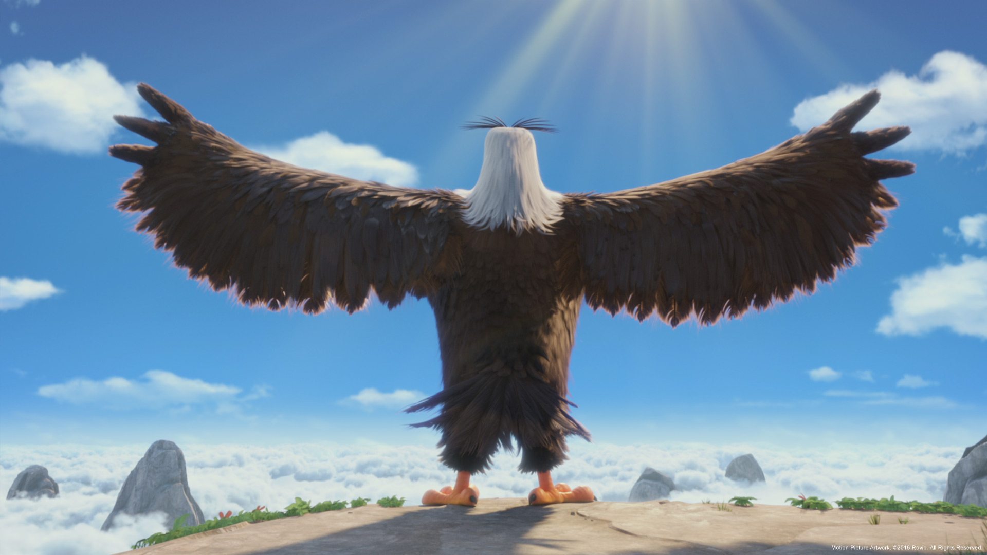 могучий орёл фото