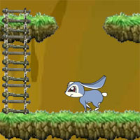Онлайн игра Новые Приключения Кико