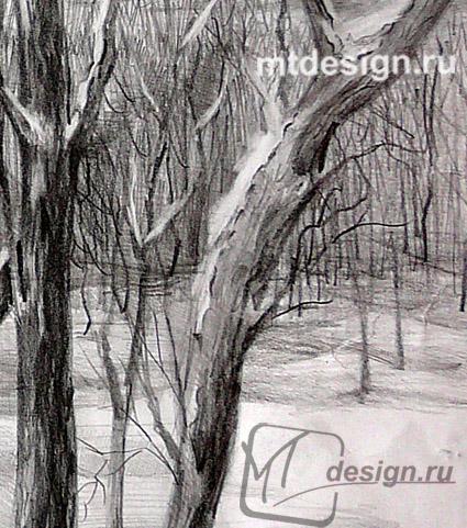 Урок рисования деревьев карандашом