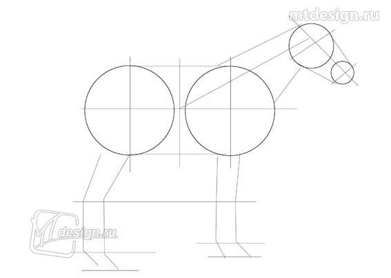 Рисуем лошадь карандашом: построение рисунка
