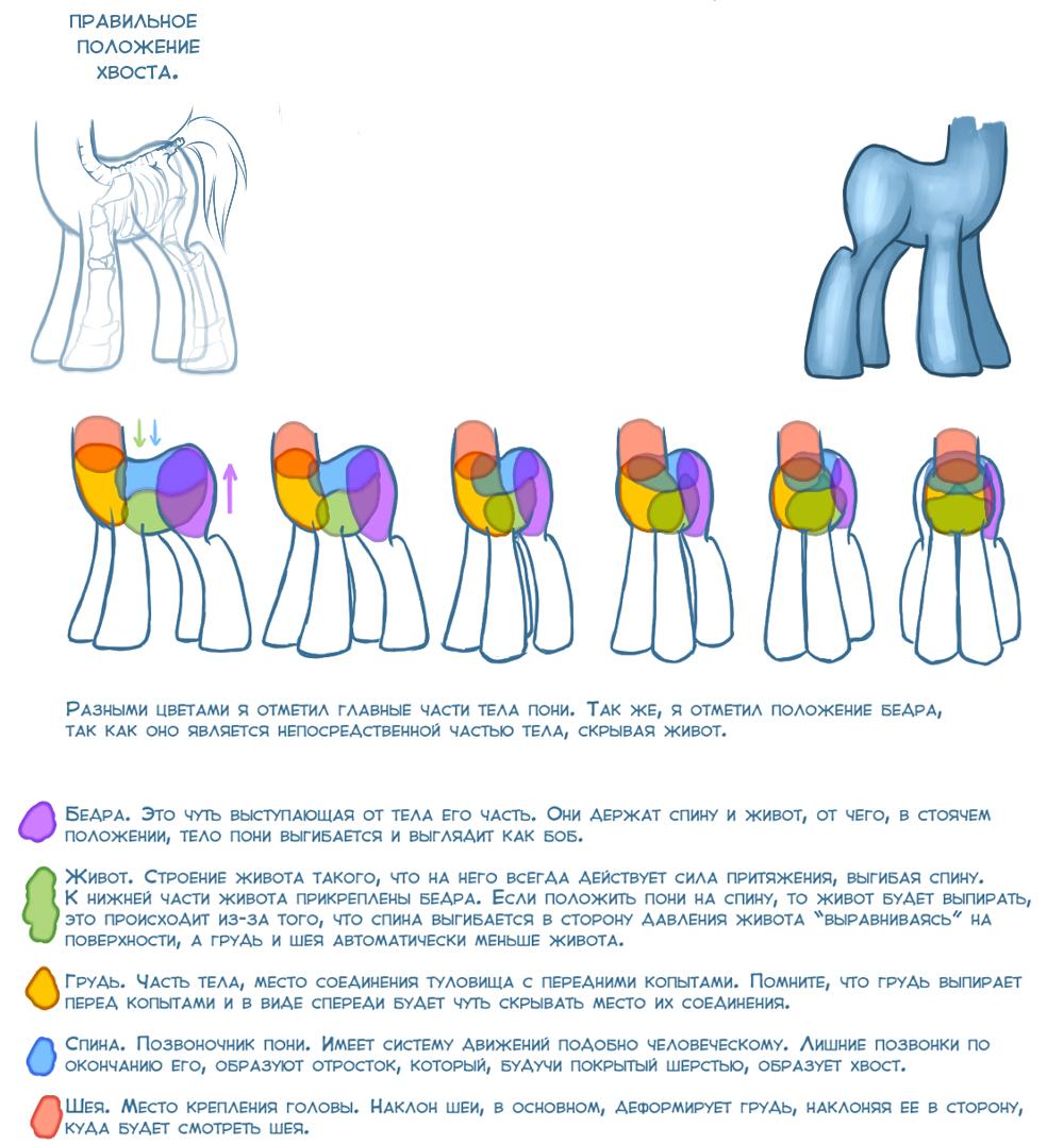 Как рисовать пони рисуем тело пони