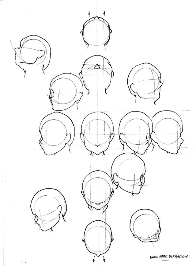 Как правильно нарисовать наклон головы: картинки подсказки