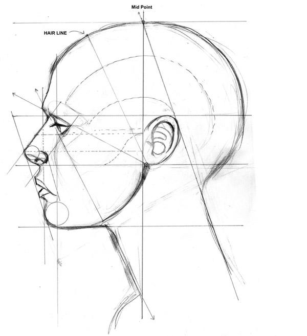 Как рисовать лицо: основные