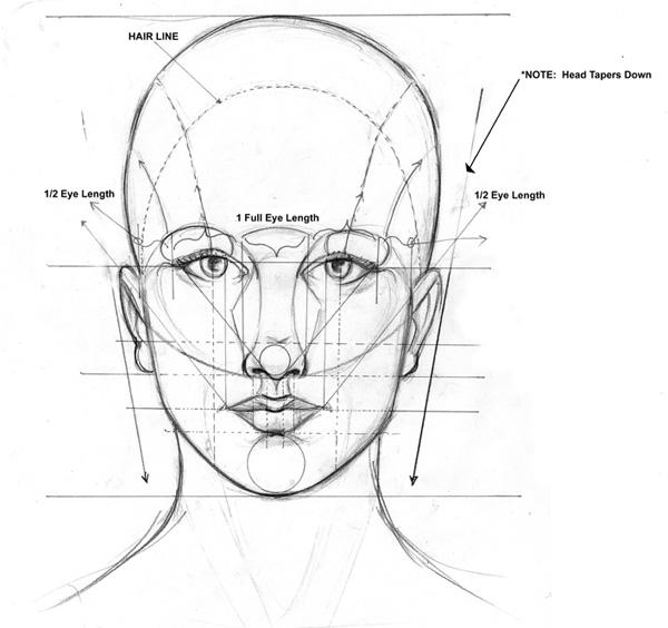 лица, Урок рисования