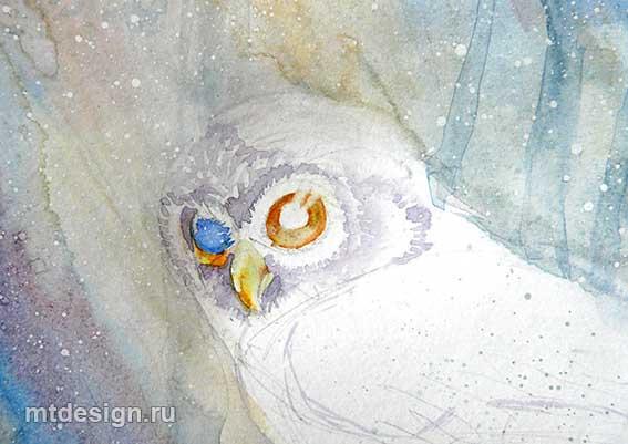 Урок рисования: Сова акварелью