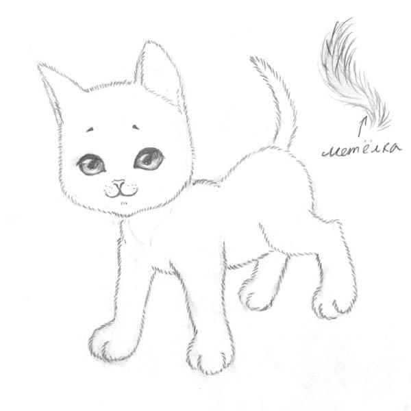 марта котик