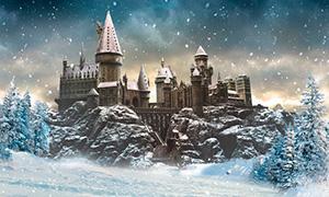 Русская школа магии в мире Гарри Поттера