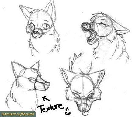 how to draw furry manga