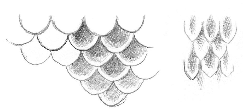 Как рисовать чешую в саи