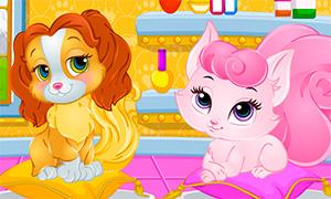 Игра для девочек: Уход за королевскими питомцами