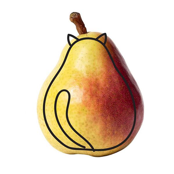 Когда в каждом фрукте видна кошка