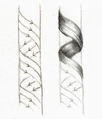 Рисование: Как рисовать кудрявые волосы