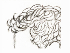 Как нарисовать карандашом кудрявые волосы