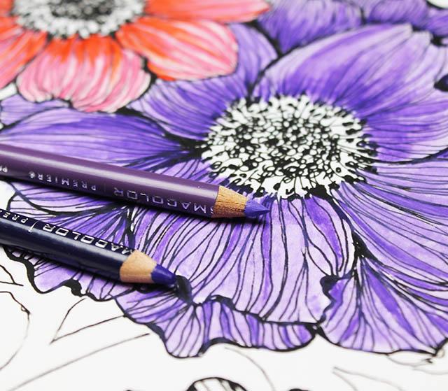 Советы по рисованию цветными карандашами