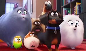 Тайная жизнь домашних животных: Третий трейлер на русском
