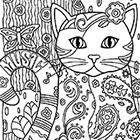 Розмальовки для дорослихНові картинки - уроки малювання
