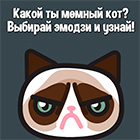 Игра: Какой ты кот из мемов?